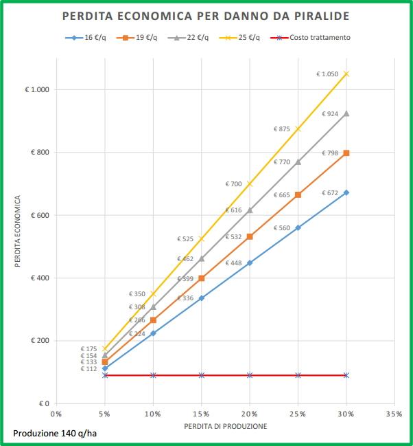 Perdita economica sulla produzione potenziale per danno da Piralide